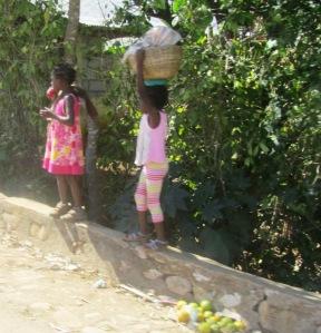 CARIBBEAN 2012-13 328