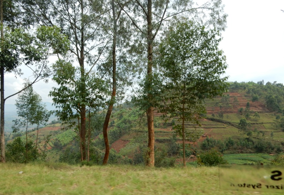 Rwanda has been described as Africa's little jewel. It does make sense looking at the countryside.