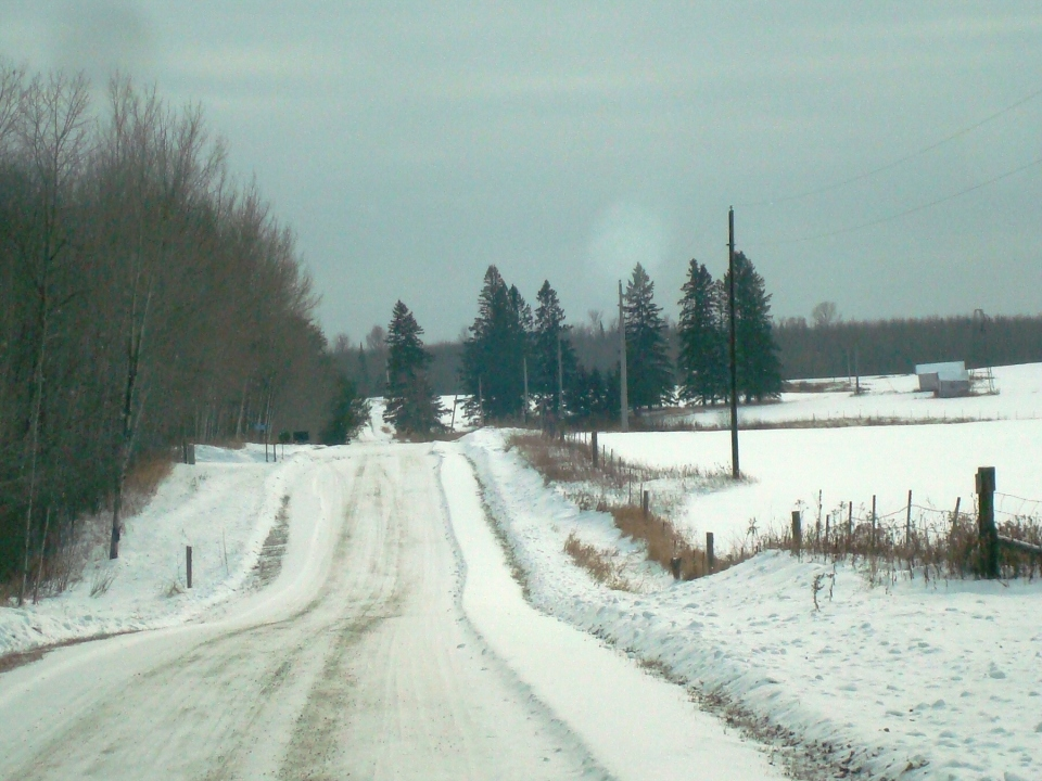 """Road heading up to the """"old place"""". Minnesota."""
